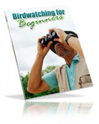 Product picture Birdwatching Ebook For Beginners with PLR