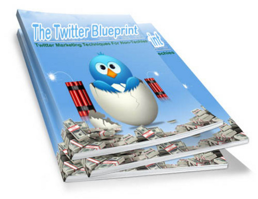 Product picture The Twitter Blueprint Ebook with PLR
